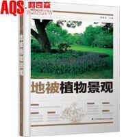 地被植物景观 植物造景丛书 周厚高 主编 草本 灌木 藤本 矮生竹类 地被植物与景观设计书籍