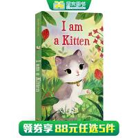 (西文)儿童英文原版绘本 I am a Kitten 我是一只小猫 纸板书 0-3-6岁 Golden Books金色