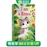 顺丰发货 (西文)儿童英文原版绘本 I am a Kitten 我是一只小猫 纸板书 0-3-6岁 Golden Bo