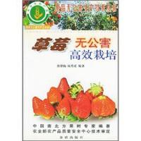 草莓无公害高效栽培