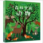 森林里的秘密:森林里的动物(精装)