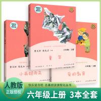 人教版 爱的教育+童年+小英雄雨来快乐读书吧六年级上册 6年级上册人教版教材配套阅读 曹文轩,陈先云 儿童