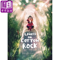 【中商原版】David Litchfield棉花崖上的灯光英文原版Lights on Cotton Rock精装