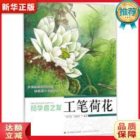 初学者之友―工笔荷花 姜冬莲,沈雁鸿 江苏美术出版社