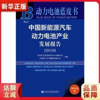 动力电池蓝皮书:中国新能源汽车动力电池产业发展报告(2019) 中国汽车技术研究中心 大连松下汽车能源有限公司 社会科