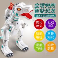 恐龙玩具仿真动物喷火电动智能机器人智力开发遥控霸王龙儿童男孩 喷火遥控恐龙 【1充电电池+遥控电池+螺丝刀】