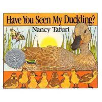 Have You Seen My Duckling? Board Book 英文原版儿童书 你看到我的小鸭了吗?(凯迪