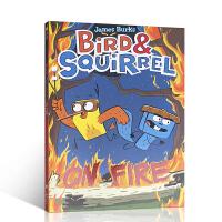 【全店300减100】英文原版进口书籍 Bird & Squirrel on Fire 小鸟与松鼠的故事 环游旅游 全彩
