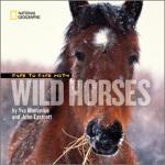 【正版直发】Face to Face with Wild Horses Yva Momatiuk,John Eastc