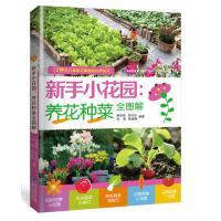 新手小花园:养花种菜全图解