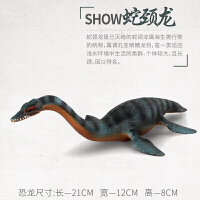 恐龙世界蛇颈龙玩具儿童实心仿真海底生物恐龙玩具模型