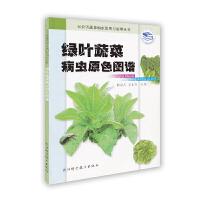 绿叶蔬菜病虫原色图谱――无公害蔬菜病虫鉴别与治理丛书