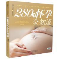 280天怀孕全知道 王琪编著 9787553739441 江苏科学技术出版社【直发】 达额立减 闪电发货 80%城市次日