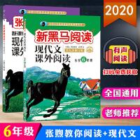 2020修订版现代文课外阅读+张煦教你阅读小学6年级上册下册阅读理解训练全国通用版