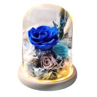 永生花礼盒玻璃罩玫瑰花小熊保送女朋友爱人生日礼品情人节惊喜的创意节日礼品