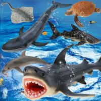 仿真儿童海洋玩具模型大白鲨海龟海豹鲨鱼蓝鲸男孩动物套装