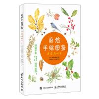 自然手绘图鉴 果实与叶子