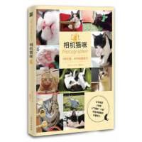 【新书店正版】相机猫咪(9种主题,45种拍摄技巧)(日)八二一北方文艺出版社9787531729044