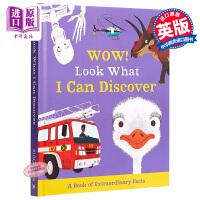 【中商原版】来,一起发现小百科 动物恐龙人体交通工具 WOW! Look What系列 Macmillan 儿童科普绘本
