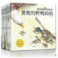 西顿动物记科普绘本全套10册2-3-4-5-6岁