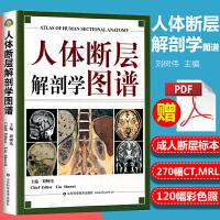 现货正版 人体断层解剖学图谱 刘树伟CT、MRI和断层解剖学习参考书 人体局部解剖学教程教材西医学书籍 山东科学技术出