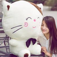 娃娃生日礼物送女友毛绒玩具 领结大脸猫大号玩偶可爱猫咪抱枕公仔