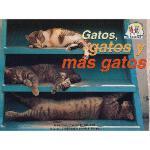 【预订】Gatos, Gatos, y Mas Gatos