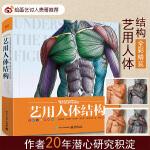【贵哥推荐 】艺用人体结构精装版全彩理解人体形态人体结构骨骼肌肉造型解剖学基础教程 动漫素描书入门教材伯里曼人体结构教