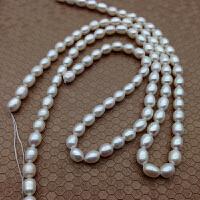 6-7mm小米粒形珍珠项链手链锁骨链DIY半成品强光秀气简约送妈妈 带珠宝盒 5.5-6.5mm