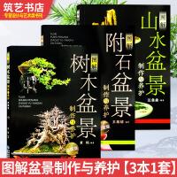 图解盆景制作与养护 3本1套 树木 附石 山水 盆景制作基础理论 盆栽指导书籍