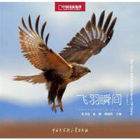 【二手旧书9成新】中国国家地理野生鸟类摄影大赛:飞羽瞬间(第二卷) 张书清,赵超,种瑞娟 9787500085911