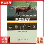 麋鹿解剖学 钟震宇,白加德 9787030603609 科学出版社 新华正版 全国70%城市次日达