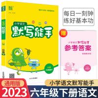 小学语文默写能手六年级下册语文人教部编版2021新版