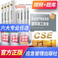 2018注册安全工程师2018全套教材 注册安全工程师2018全套教材 汇编 真题精析与权威命题密卷 全套9本 中国大