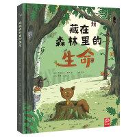 鹦鹉螺・自然科学启蒙与生命教育绘本:藏在森林里的生命