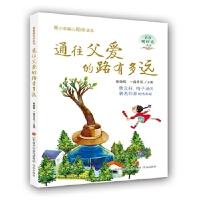 【正版现货】通往父爱的路有多远--青春暖时光系列丛书 陈晓辉、一路开花 9787548827610 济南出版社