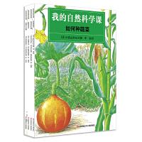 我的自然科学课全4册 如何养小动物昆虫水生物种蔬菜 正版儿童科普绘本故事书3-6-9岁婴幼儿童早教启蒙认知科普书培养观