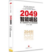 2049:智能崛起――新一代信息技术产业中长期发展战略