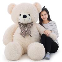 毛绒玩具熊公仔玩具熊大号抱枕布娃娃抱抱熊可爱女孩生日礼物女生
