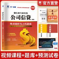 银行从业资格证考试教材2021真题 中国银行业专业人员职业资格考试专用试卷・考点精析与上机题库 银行业专业实务公司信贷