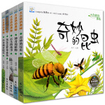 全5册小果树科学探索绘本 奇妙的昆虫 小水滴历险记 风是怎样形成的 石头的故事 神奇的植物大自然的奥秘儿童启蒙早教科普