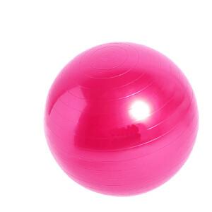 物有物语 瑜伽球 健身球瑜伽球PVC65cm直径加厚防爆体操健身球平衡瑜珈美体球大龙球