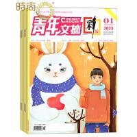 青年文摘彩版杂志2019年全年杂志订阅 1年共24期 青春励志成长文学文摘期刊10月起订