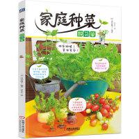 家庭种菜超简单(快乐种植!美味享受!再生蔬菜与普通蔬菜种植新体验)
