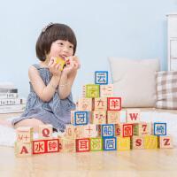 木玩世家木制玩具男孩女孩益智大颗粒中文汉字积木1-2周岁3-6岁i5008