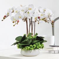 蝴蝶兰仿真花套装现代客厅摆件装饰花餐桌花假花插花花艺仿真兰花