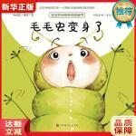 毛毛虫变身了 桑德里娜波,娜塔莉洛朗 北京时代华文书局9787569919592『新华书店 品质无忧』