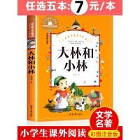 [任选5本35元]大林和小林二年级三年级正版书注音版图书张天翼著一年级四年级小学生必读课外阅读书籍带拼音的儿童读物6-7