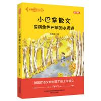大作家的语文课:铺满金色巴掌的水泥道(全彩・美绘)
