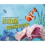 【正版全新直发】小丑鱼安德拉的守候 糖朵朵 9787521001259 海洋出版社